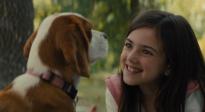 《一条狗的使命2》推广曲《当你孤单你会想起谁》MV