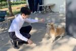 王源晒照身穿正装路边逗狗 网友吐槽:人不如狗