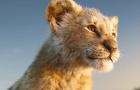《獅子王》中國定檔預告片