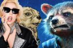 《一個明星》再聚首?Gaga有望配音火箭浣熊伴侶