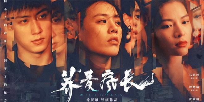 《荞麦疯长》首发预告 黄景瑜与两位女主关系成谜