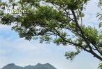 """近日,陈学冬登封《新旅行》六月刊,一组以""""探玩天地""""为主题的旅行写真全新曝光。"""