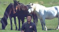 """吴京为内蒙古科右中旗出谋划策 打造草原上的""""枫""""情马镇"""