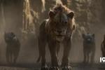 新版《狮子王》:动物太真实,感觉面瘫?