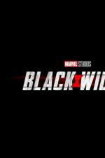 《黑寡妇》定档明年5月1日 时间线承接《美队3》