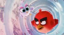 《愤怒的小鸟2》发布中文配音版预告片