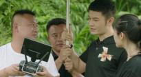 星光大电影聚焦江城野生象 导演表示拍摄中学习到扶贫理念