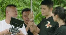 星光大電影聚焦江城野生象 導演表示拍攝中學習到扶貧理念