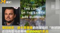 """亚马逊雨林火势触目惊心 小李子""""地球联盟""""捐款500万美元"""
