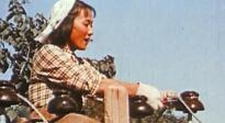 《足迹》:女演员金迪在电线杆上站了一天只为等一朵云彩?