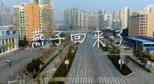 腾格尔演唱新歌《燕子回来了》 致敬援鄂内蒙古医疗队