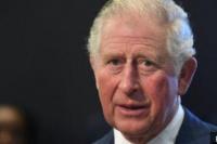 英媒:英国王储查尔斯王子新冠病毒检测呈阳性