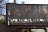杰昆·菲尼克斯登上广告牌 号召大家享受素食生活