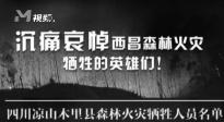 沉痛哀悼西昌森林火灾牺牲的英雄们!