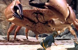 5人流亡变异荒岛,这里蜜蜂比大象还大,螃蟹如同巨兽!