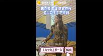 《六公主》首期录制结束 陈立农、李现、哈妮克孜愉快下班