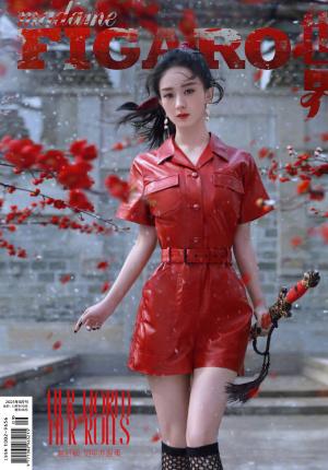 赵丽颖奇遇江湖封面大片 红衣女侠周身游凤意境绝