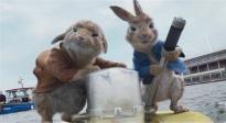 端午档影市报收4.6亿《超越》领跑 坏猴子影业发布2021年度片单